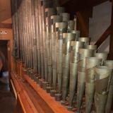 Medium organ pipes