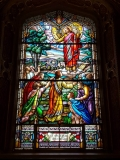 Stained glass in  Notre-dame Cathedral