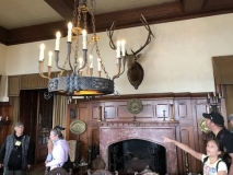 Chandelier and fireplace
