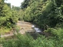Canajoharie Stream