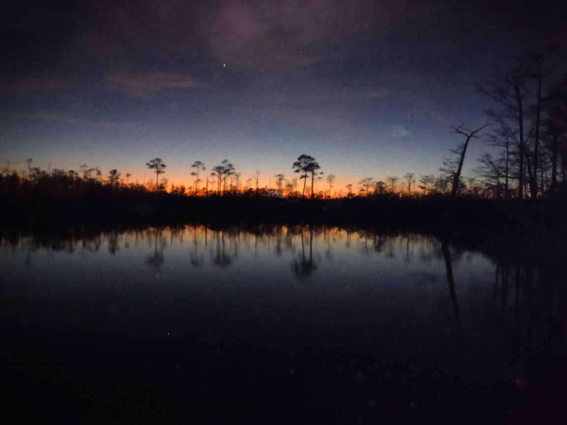 Sunset in swamp
