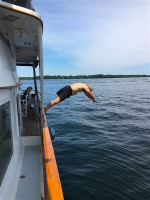 Tom's dive