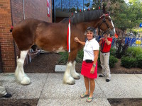 Paula with Clydesdale