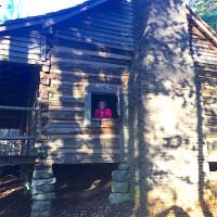 Butler dogtrot cabin